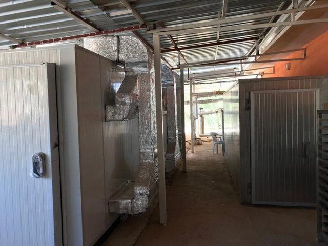 Jeotermal kaynaklı sebze meyve kurutma tesisi kapasite artışında son aşamaya gelindi