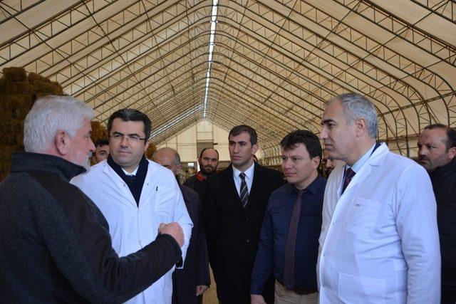 Vali Memiş Aziziye ve Aşkale'de besi çiftliklerini gezdi
