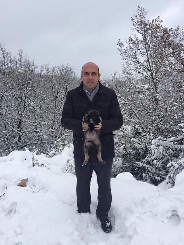 Kaymakam, köpek yavrularını karda donmaktan kurtardı
