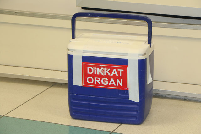 Beyin ölümü gerçekleşen kadının organları hastalara umut oldu