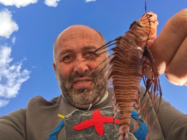 Gökava'da istilacı tür olan aslan balığı avlandı