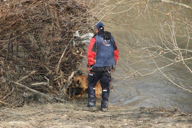 Kayıp genci arama çalışmaları için özel köpek getirildi