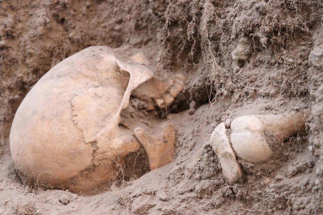Sit alanında ortaya çıkan insan kemikleri korku yarattı