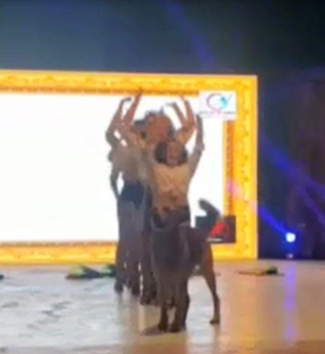 Köpek, dans gösterisi sırasında sahneye çıktı