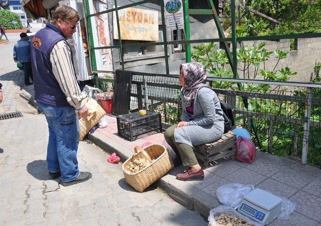 Cincile mantarı pazardaki yerini aldı