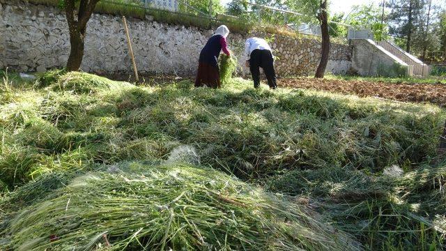 Gercüş'te hayvanlar için kışa hazırlık yapılıyor