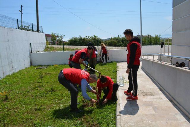 Sinop'ta 19 Mayıs'a özel 19 fidan