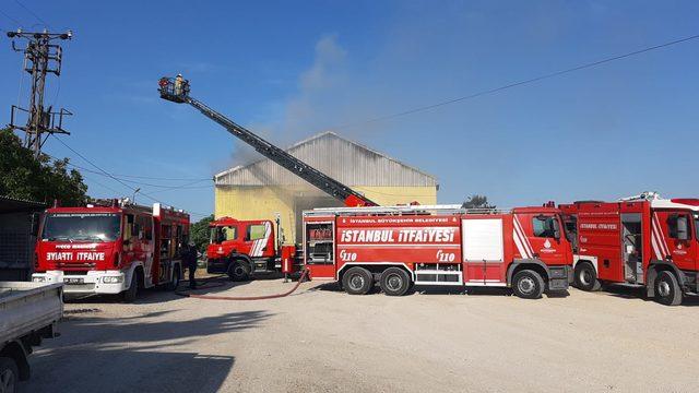 Çatalca'da ayçiçeği deposunda yangın
