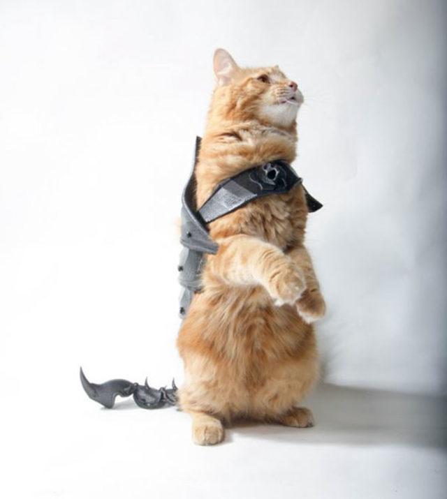 cat-armor-3d-print-that-thing-7