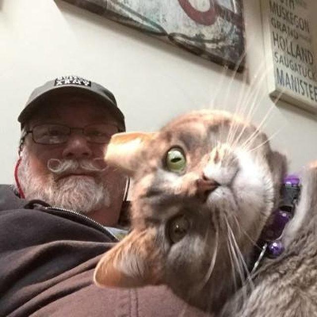 yok-artik-kedilerin-bizden-cok-daha-iyi-selfie-cektiklerinin-21-kaniti-5