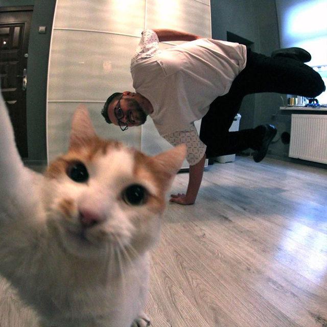 yok-artik-kedilerin-bizden-cok-daha-iyi-selfie-cektiklerinin-21-kaniti-23