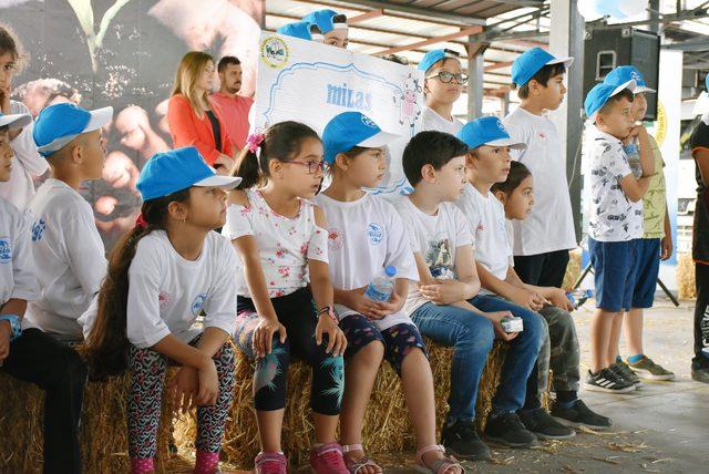 Milas'ta Dünya Süt Günü kutlaması