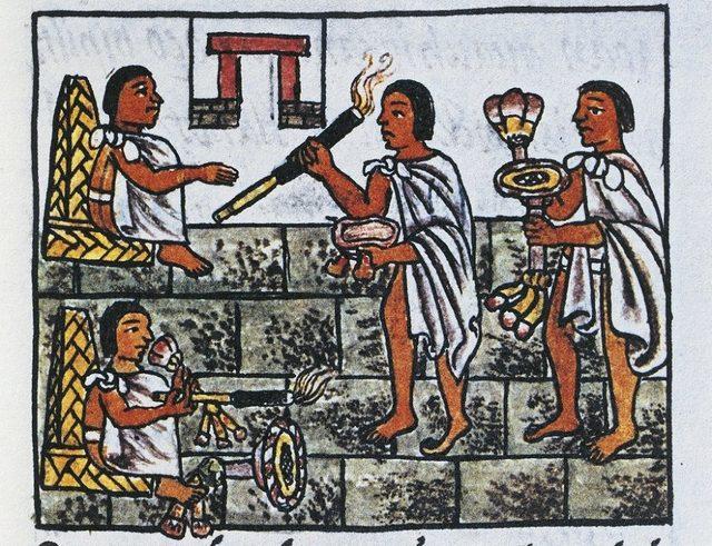 Tütünün birçok türü Amerika'da ortaya çıktı ve 15. yüzyılda Avrupalılar kıtaya gelene kadar ilaç olarak kullanıldı.
