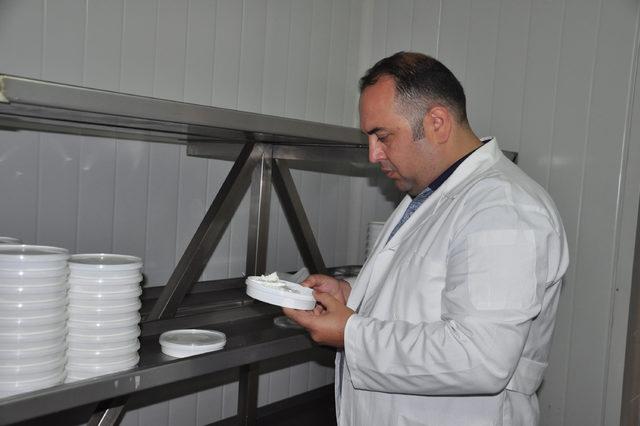 Bor mineraliyle süt ürünlerinin ömrünü yüzde 25 uzattılar