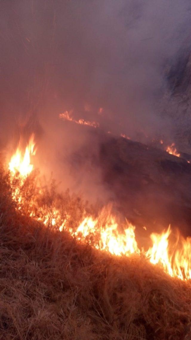 Van Kalesi'nin güneyinde ot yangını