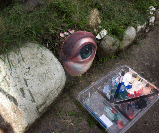 I-collect-rocks-paint-eyes-on-them-and-return-them-to-the-landscape-5cecc8fa41773__880