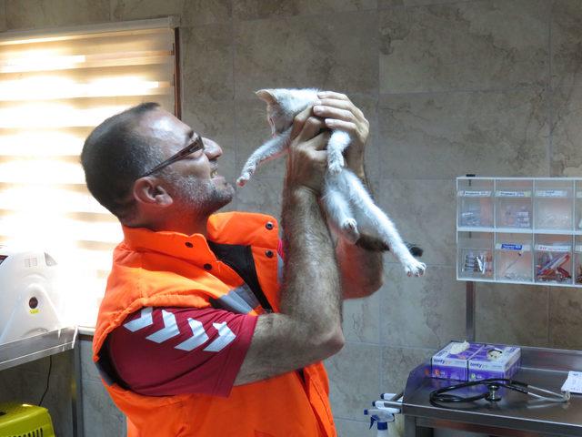 Yavru kediyi kurtaran kahraman işçi o anları anlattı