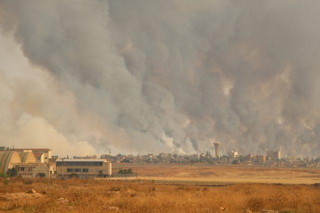 Suriye'deki arazi yangını Nusaybin'den görüntülendi