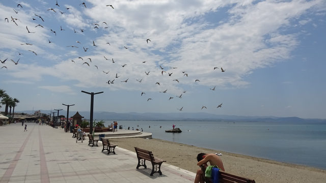 Kuzey Ege sahilleri boş kaldı
