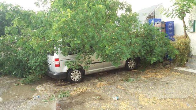 Gelibolu'da sağanak, dolu ve rüzgar yaşamı olumsuz etkiledi