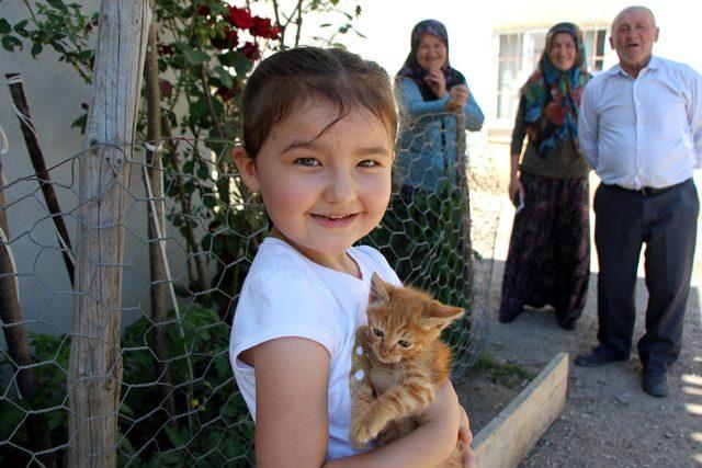 Minik Azra, selden kurtardığı yavru kediye 'Pamuk' adını verdi