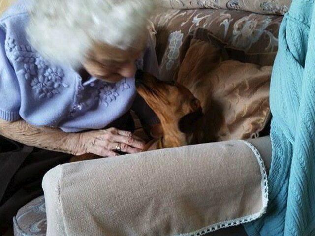 Alzheimer'lı Kadın ile Köpek Yavrusunun Kalbe Dokunan Hikayesi
