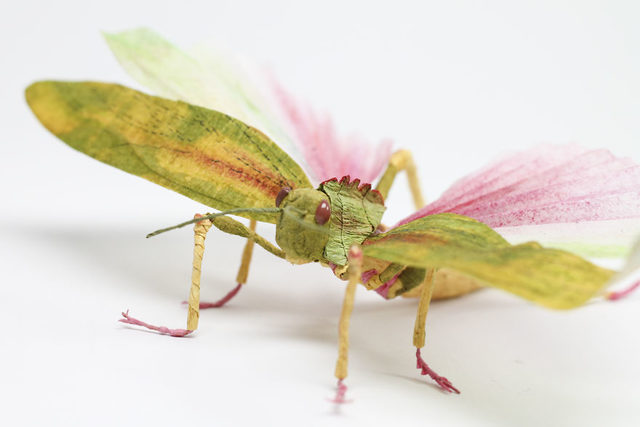Crepe_Paper_Insects_PaperArt_Tropidacris_Locust_by_faltmanufaktur01-Feature-5d250fb26d788__880