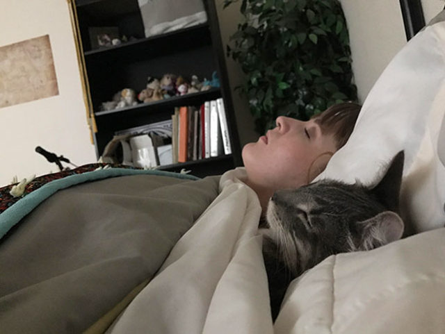 funny-cats-sleeping-weird-positions-73-5c0f808db0776__605