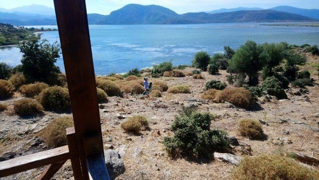 Bafa Gölü'nde temizlik çalışması yapıldı