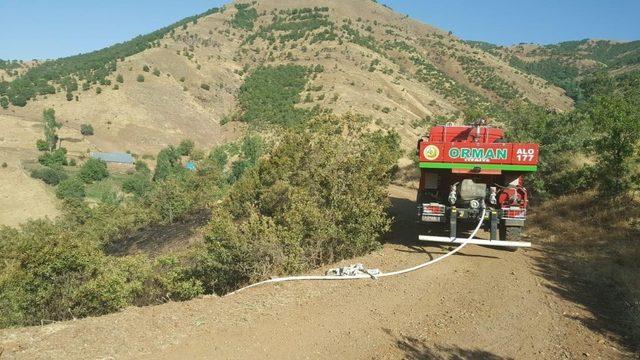 Yangın ormanlık alana sıçramadan söndürüldü