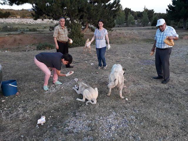 Afyonkarahisar ADD'den doğadaki hayvanlara yiyecek
