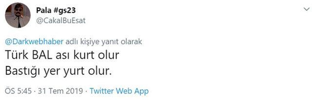 idama-mahkum-edilen-ancak-firar-eden-turk-ari-ile-ilgili-atilmis-komik-tweetler-2