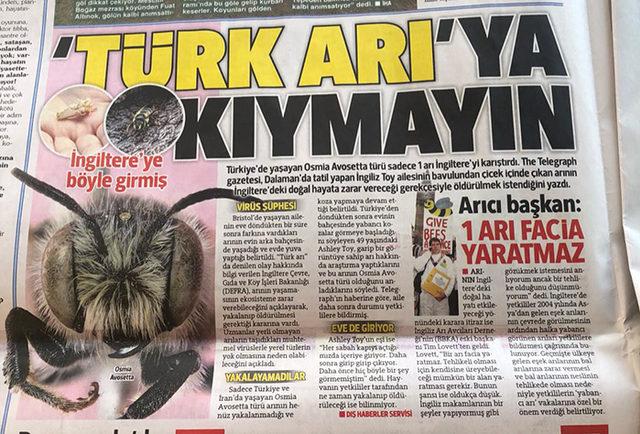idama-mahkum-edilen-ancak-firar-eden-turk-ari-ile-ilgili-atilmis-komik-tweetler-17