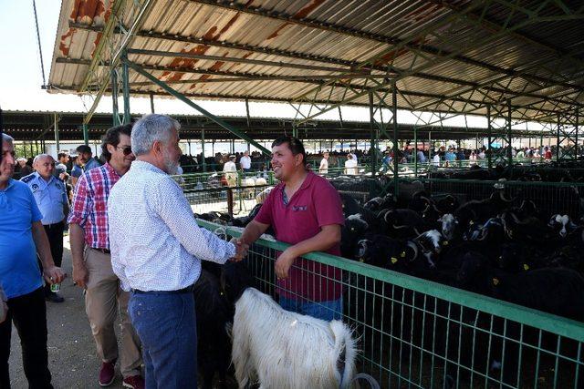 Başkan Başdeğirmen, Hayvan Pazarında incelemelerde bulundu