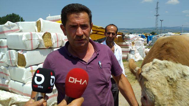 Kurban pazarının 1.5 tonluk 'Aslan'ı, rekor fiyata satıldı