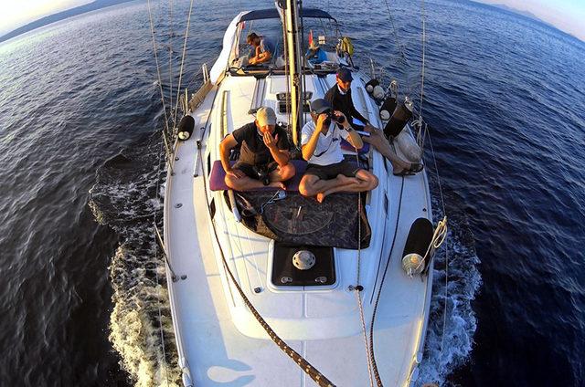 marmara-denizindeki-yunuslar-sayildi-_8067_dhaphoto1