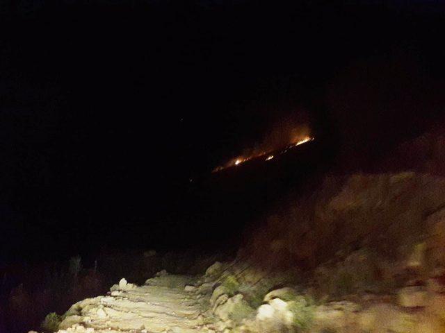 Beydağı'nda çıkan yangın, 5 hektarlık alanı küle çevirdi