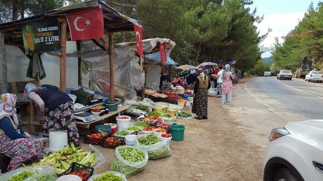 Organik ürünler tüketiciye aracısız olarak ucuza ulaşıyor