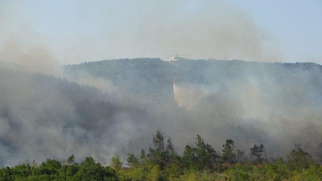 Keşan'da orman yangını (3)