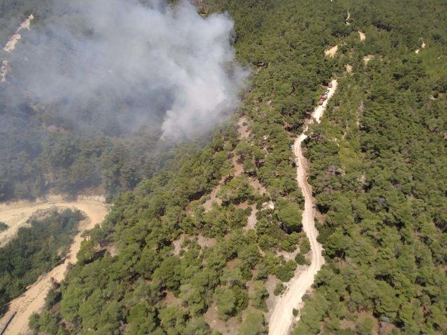 Buldan'da 1 dekar ormanlık alan yandı