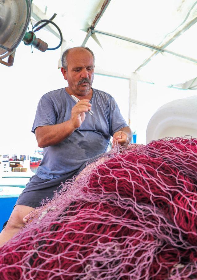 'Balon balığı' balıkçıların kabusu oldu