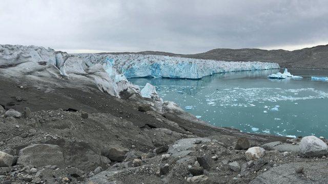 Buzulların üzerindeki kararmaya algler neden oluyor. Bu kararma ise güneş ışınlarının daha fazla emilmesine yol açtığı için erimeyi daha da hızlandırıyor.