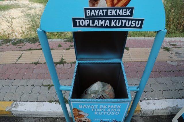 Tekirdağ'da israfa karşı bayat ekmek kutusu