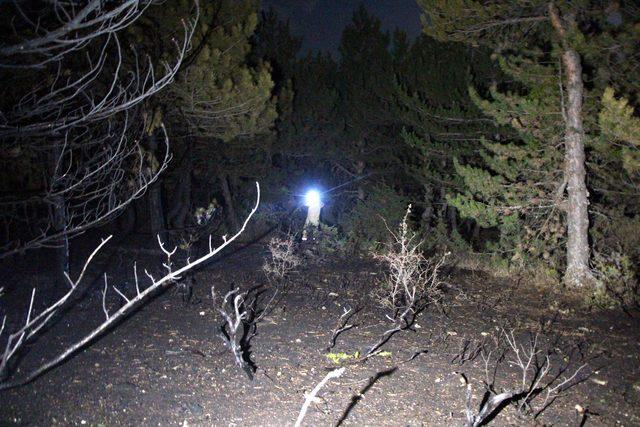 Kıbrıscık'ta orman yangını