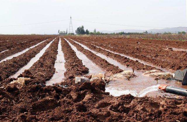 25 sulama birliğinin Dicle Elektrik'e olan borcu yarım milyar liraya yaklaştı