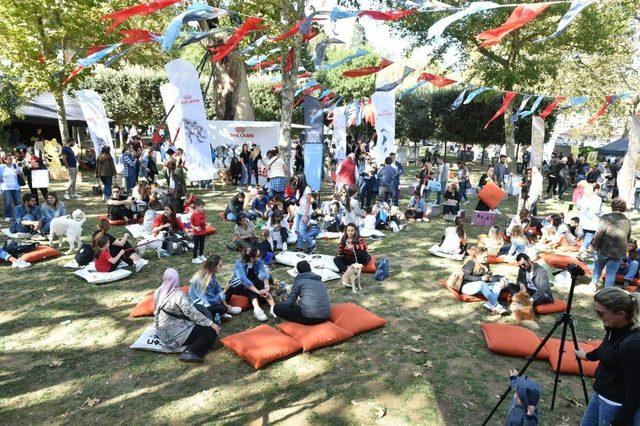 Türkiye'nin ilk Evcil Hayvan ve Yaşam Festivali ''Petival' renkli anlara sahne oldu