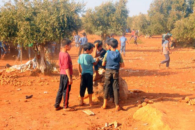 Zeytin ağaçları arasında ders gören Suriyeliler okul istiyor