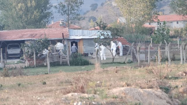 Bursa'da 2 ağıldaki 170 kuzu telef oldu