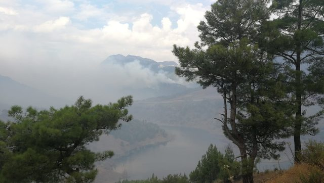 Anamur'da yıldırım düşmesiyle çıkan orman yangınlarına müdahale