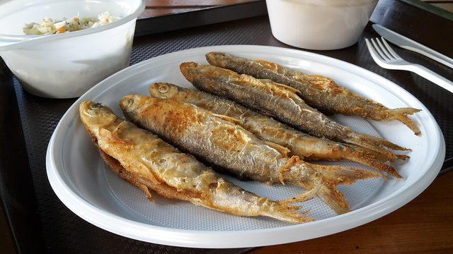 fish-4176085_960_720